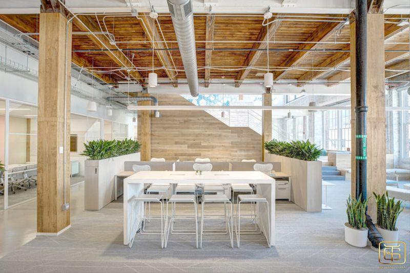 Văn phòng xanh sẽ đem lại cho văn phòng của bạn một vẻ đẹp trang nhã