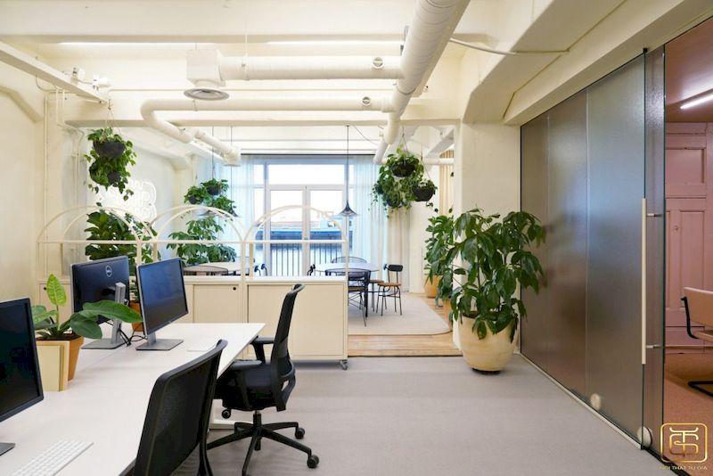 Thiết kế nội thất văn phòng chuyên nghiệp có nhiều cây xanh